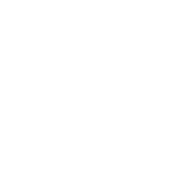 Paradise City 2021